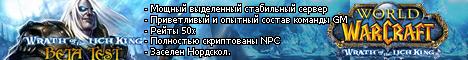 World of Warcraft Blizzlike x50 Banner